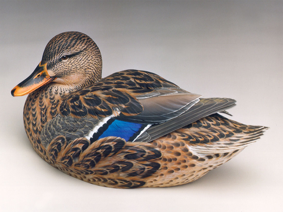 decorative wooden duck decoys