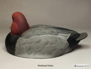 REDHEADDRAKE2